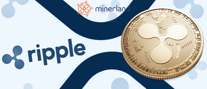 What is Ripple XRP? A Step-by-Step Guide?