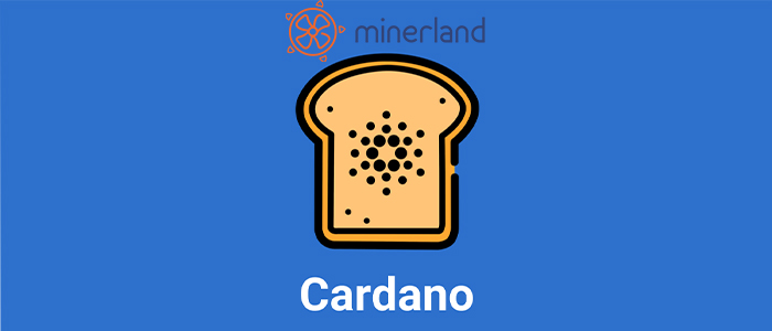 How Cardano solved Crypto problems?